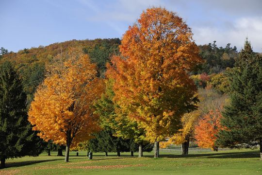 Follaje de otoño en Cooperstown. (Milo Stewart Jr./National Baseball Hall of Fame and Museum)